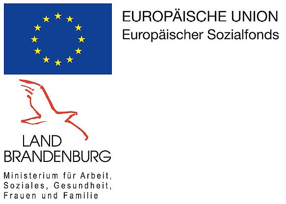 Förderhinweis EU