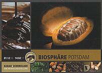 Kakao und Schokolade in der Biosphäre