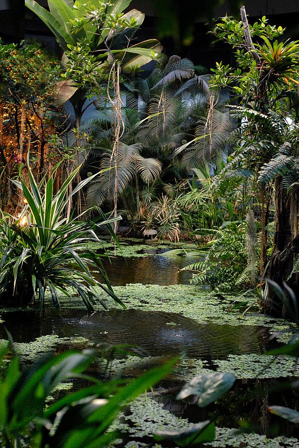 Dschungel bei Nacht in der Biosphäre Potsdam