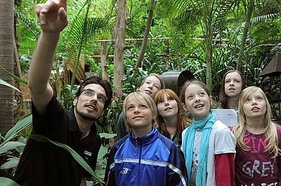 SchülerInnen lernen den Regenwald in der Biosphäre Potsdam kennen