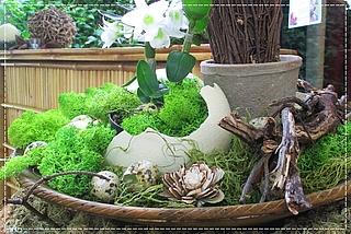 Ostern in der Biosphäre Potsdam
