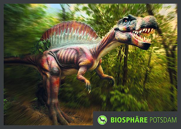 Dinofieber und Dinos in der Biosphäre Potsdam