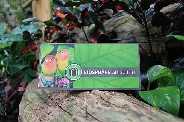 Gutschein Biosphäre Potsdam