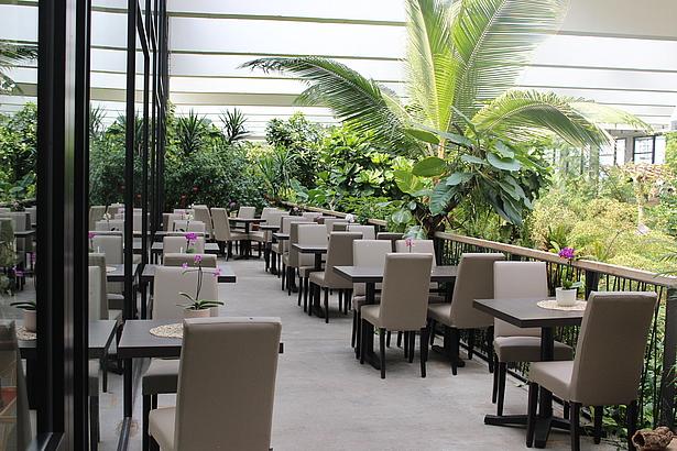 Restaurant Luncheon mit Blick in den Dschungel der Biosphäre Potsdam