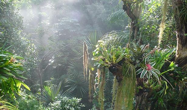 Ein Ausflug in die Biosphäre Potsdam