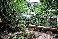 Karnivorenausstellung in der Biosphäre Potsdam