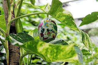 Ferien zu Ostern in der Biosphäre Potsdam