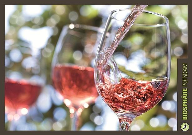 Weinfest in der Biosphäre Potsdam
