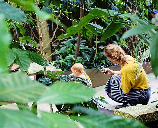 Blogger, Familie, Biosphäre Potsdam