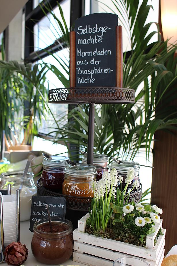 Frühstück in den Tropen, Brunch Potsdam in der Biosphäre Potsdam