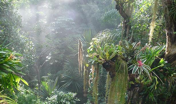 Gruppenfahrt in die Biosphäre Potsdam