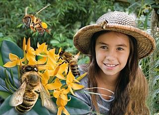 Bienenausstellung in der Biosphäre Potsdam