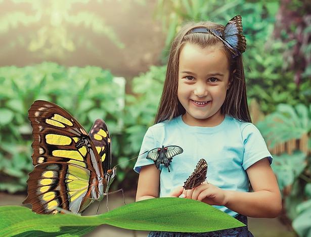 Schmetterlingsasusstellung in der Biosphäre Potsdam