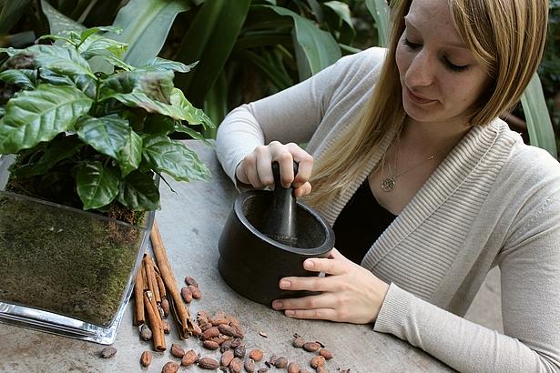 Schokoladenworkshop in der Biosphäre Potsdam, Schokoträume Berlin Brandenburg, Workshop in der Biosphäre