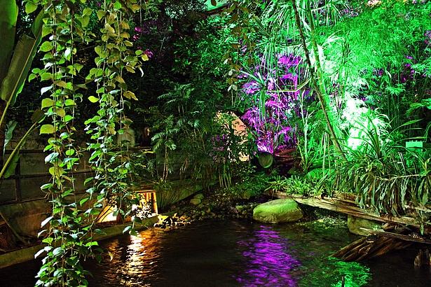 Potsdam im Licht in der Biosphäre Potsdam