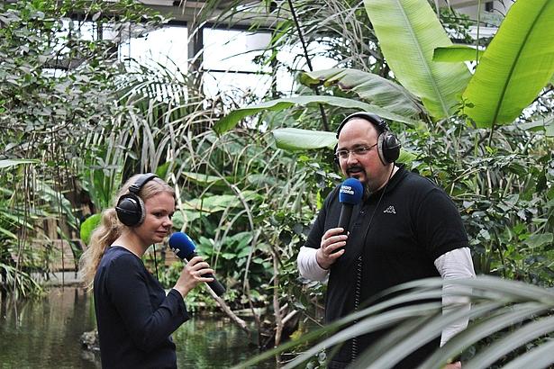 Biosphäre Potsdam, Radio Regenwald, Radiosendung